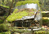 Abandoned Forest Treasure Escape