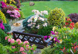 Astonishing Garden Escape