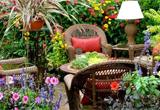 Escape From Tropical Garden