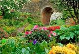 Garden Flower Escape