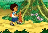 Go Diego Go Rain Forest