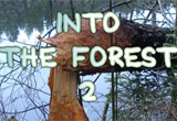 Into The Forest 2 Game