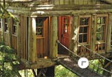Mushroom Tree House Forest Escape