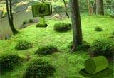 Peaceful Meadow Escape