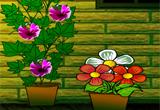 Praveena House Escape Game