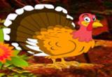 Thanksgiving Adventurous Forest Escape