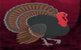 Wild Turkey Fairyland Escape
